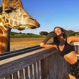 Bella Hadid geht ins Zwiegesprächmit dieser charmanten Giraffe.