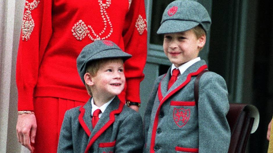 Lady Diana, Prinz Harry, Prinz William