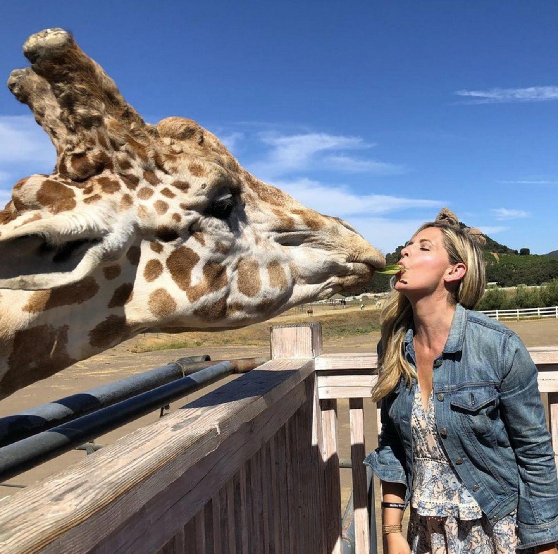 """""""Das ist Stanley. Wir sind verliebt. Verurteilt uns nicht"""", kommentiert Schauspielerin Sarah Michelle Gellar diesen tierischen Schnappschuss auf ihrer Instagram-Seite.Darauf füttert die Schauspielerin Giraffe Stanley mit dem Mund. Die zweifache Mutter befindet sich gerade auf einer Weinsafari in Malibu."""