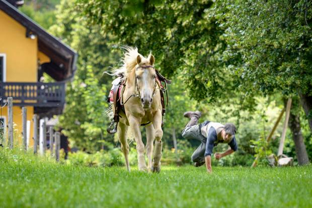 Folge 2987 am Montag (03.09.18): Viktor (Sebastian Fischer) stürzt vom Pferd