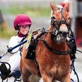 28. Juli 2018  Debüt auf der Trabrennbahn:Prinzessin Märtha Louise von Norwegen nimmt zum ersten Mal am Ponyrennen über 2100 Meter auf der Trabrennbahn in Biri teil.