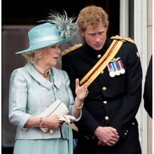 Herzogin Camilla ist seit 13 Jahren die offizielle Stiefmutter von Prinz Harry
