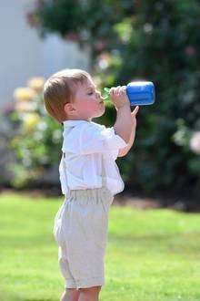 Bei diesenTemperaturen ist ein erfrischendes Getränk Gold wert: Hochkonzentriert gönnt sich Prinz Oscar einen Schluck.