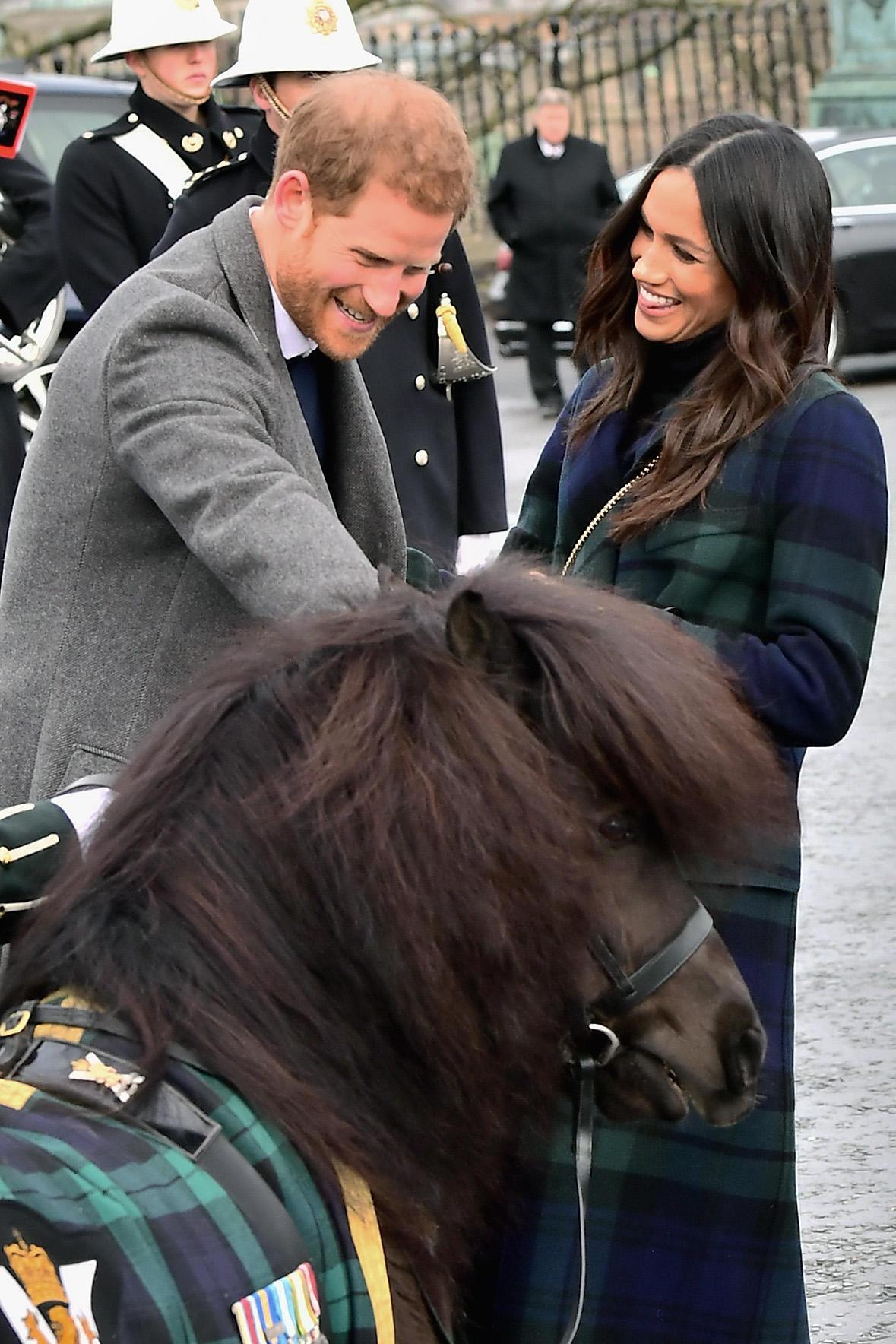 Sowohl Prinz Harry als auch Herzogin Meghan sind sehr tierlieb: Beim Besuch in Schottland freunden sie sich mit einem Schettland-Pony an.