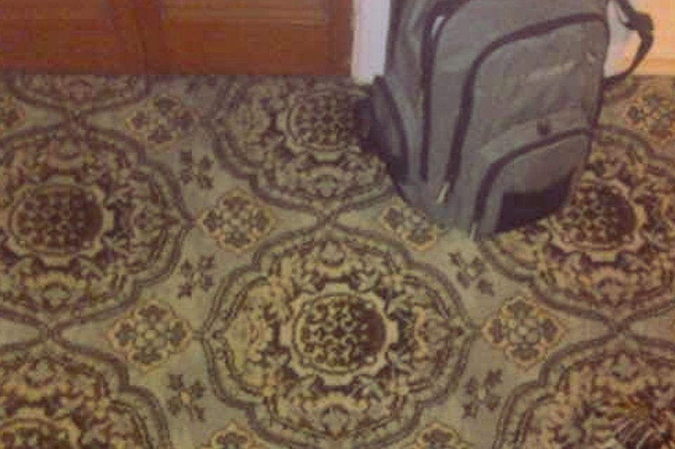 Wer findet das Tier auf dem Teppich?
