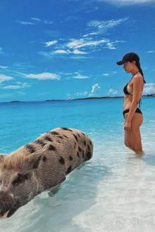6. August 2018  Aurora Ramazzotti lebt den Traum vieler Urlauber und geht mit den süßen Schweinchen auf den Bahamas schwimmen.