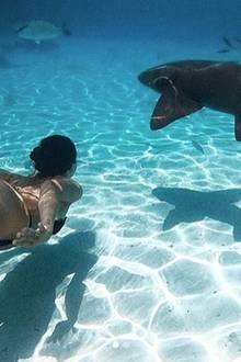 Die schöne Tochter von Michelle Hunziker und Eros Ramazzotti beweistMut beim Tauchen mit Haien.
