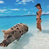 Aurora Ramazzotti hat es sich nicht nehmen lassen Fotos mit den ungewöhnlichen Bewohnern der Bahamas-InselBig Major Cay(Pig Beach) machen zu lassen. Doch damit nicht genug ...