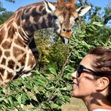 Dass Prinzessin Mary genießt den schönen Safaripark Knuthenborg genießt, scheint der Giraffe total egal zu sein. Ganz ungeniert zeigt sie demdänischen Royal die Zunge.