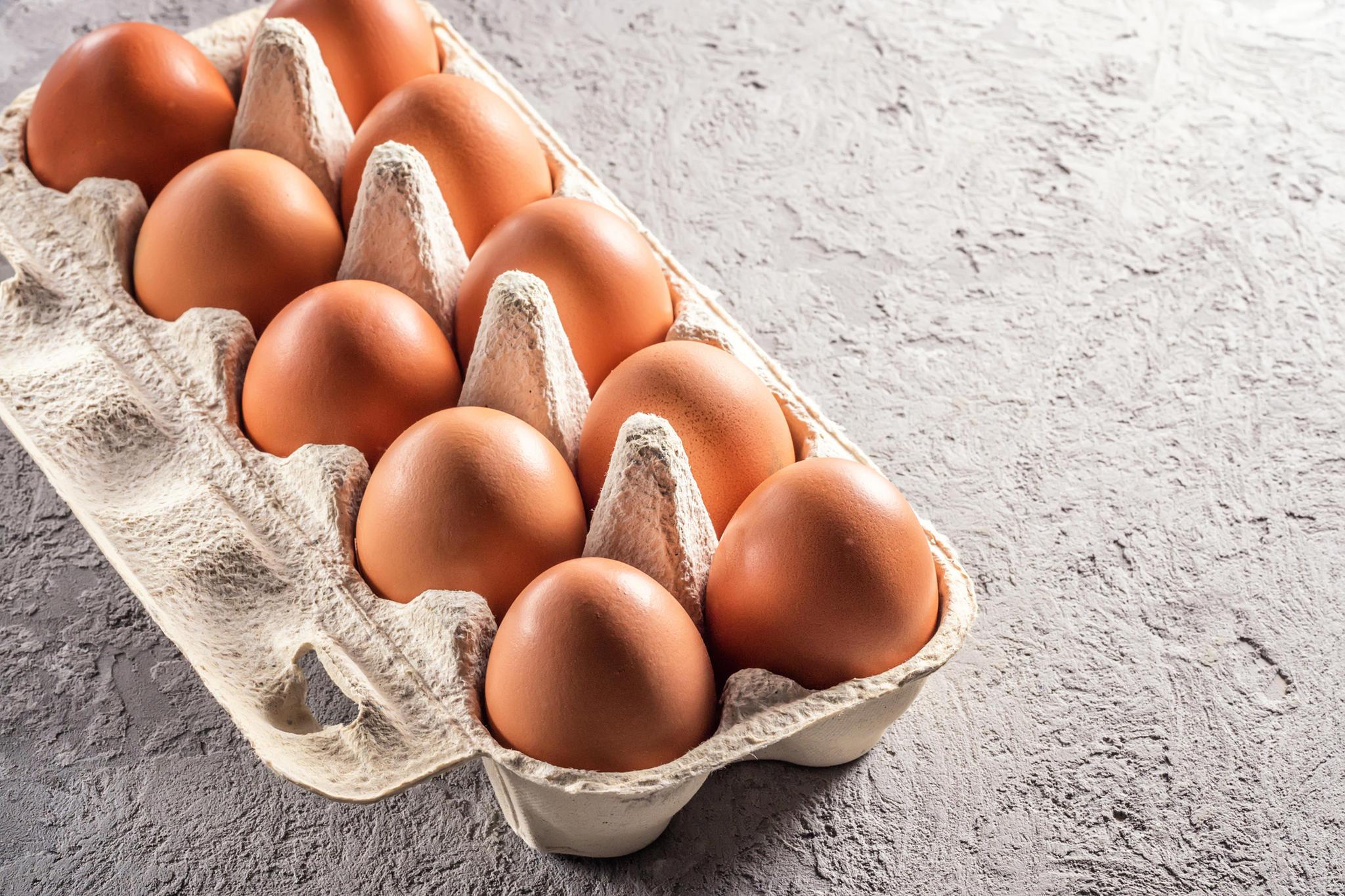 Salmonellen in Bio-Eiern Rückruf bei Lidl, Aldi, Real, Penny, Kaufland