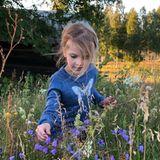 20. August 2018  Auf einer sommerlichen Wiese sammelt die hübsche Estelle Wildblumen ...