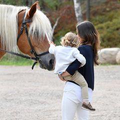 Mit einer Streicheleinlage wird sich noch schnell beim Pferd für die tolle Kutschfahrt bedankt.