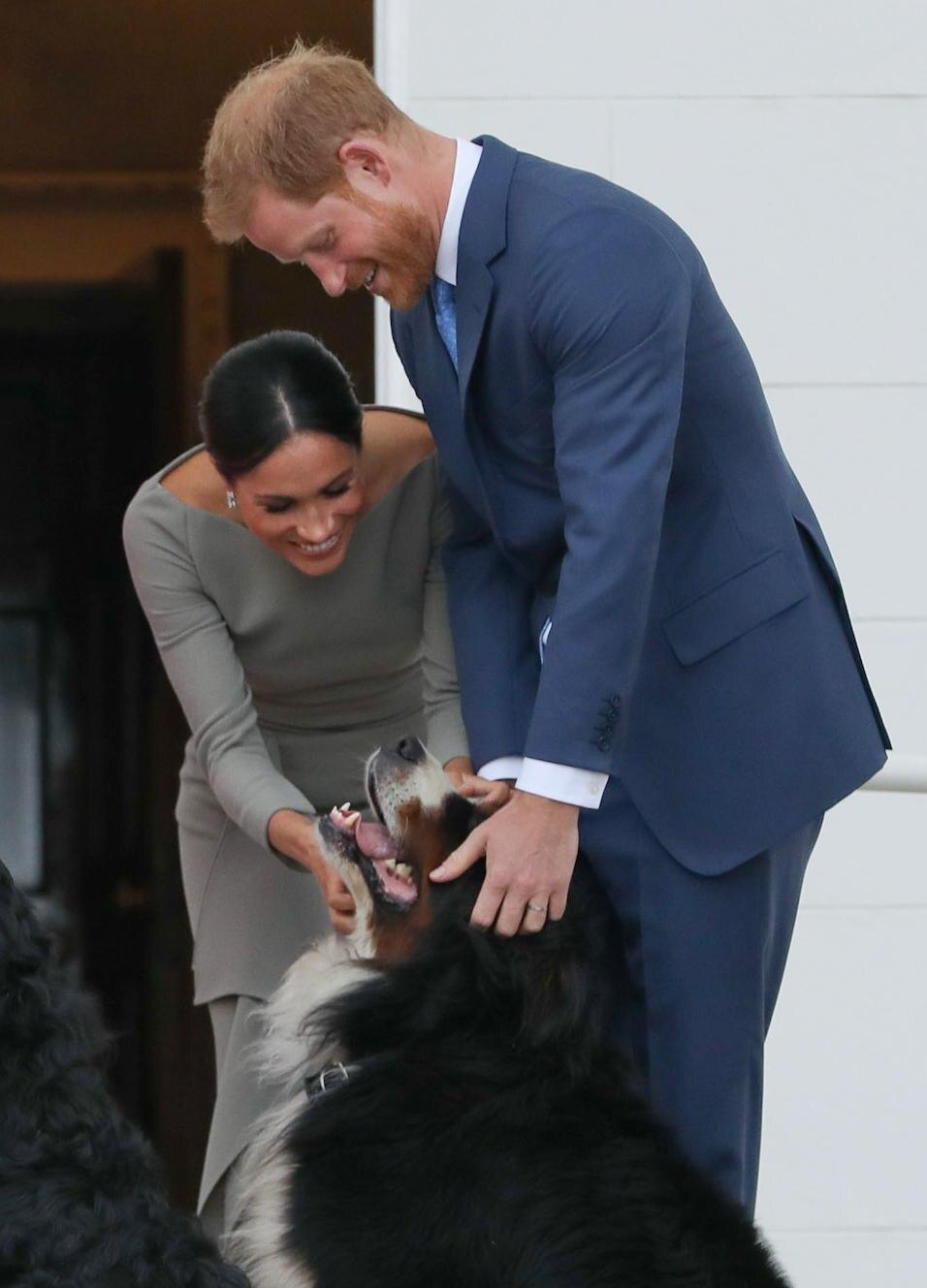 Harry und Meghan knuddeln mit dem Hund des irischen PräsidentenMichael Higgins.