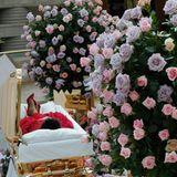 """29. August 2018  Letzte Ehre für die """"Queen of Soul"""": Zahlreiche Fans verabschieden sich in Detroit am offenen Sarg von der verstorbenen SouldivaArethaFranklin. In einem gold-glänzenden Sarg ist die Leiche der Sängerin aufgebahrt. Sie trägt ein rotes Kleid und rote Schuhe.Die Beine der Verstorbenen sind übereinander geschlagen. Trotz großer Trauer, vermittelt diese Geste auch ein kleines bisschen Leichtigkeit. Am 31. Augustsoll es eine Trauerfeier im Greater Grace Temple in Detroit geben, zu der Wegbegleiter und Stars wie der frühere US-Präsident Bill Clinton, Soul-Sänger Smokey Robinson sowie Stevie Wonder, Faith Hill, Jennifer Hudson, Chaka Khan und Yolanda Adam kommen sollen. Danach soll Aretha Franklin auf dem Woodlawn-Friedhof beerdigt werden, wo bereits ihr Vater, drei Geschwister und ein Neffe beigesetzt wurden."""