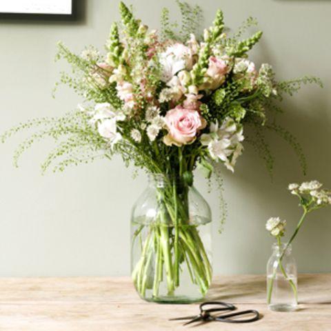 """Blumen von """"Bloom & Wild"""""""