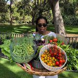 Wow, was für eine Ausbeute. Oprah Winfrey hat Bohnen, Kohl und Tomaten aus ihrem Garten geerntet.