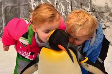3. September 2018  Warm eingepackt besuchen Prinzessin Gabriella und Prinz Jacques diesen niedlichen Pinguin. Für den gefiederten Zeitgenossen gibt es von dem royalen Nachwuchs zum Abschied noch einen Kuss.