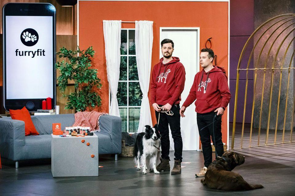 """Können die Brüder Micha (l.) und Jona Neubert aus Bonn mit ihrer Idee für Hundeliebhaber bei den Löwen punkten? Für""""furryfit"""" wollen sie 200.000 Euro und bieten 15 Prozent Anteile an."""