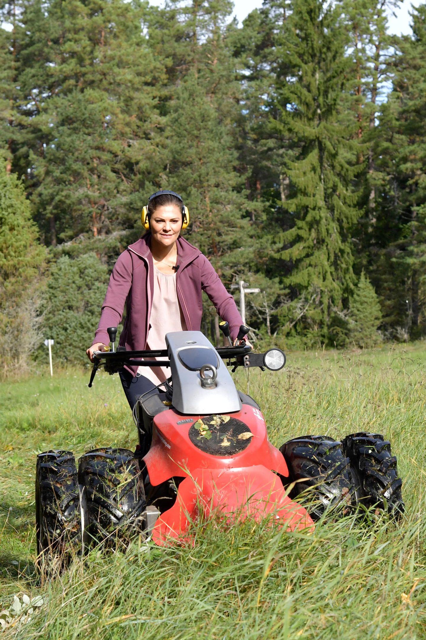 12. September 2018  Prinzessin Victoria gibt Gas. Bei ihrer Wanderung durch die Provinz von Uppland düst sie mit einem XXL Rasenmäher über die Weiden.