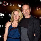 """David Duchovny spielt von 1993 bis 2002 den """"Akte X""""-Agenten Fox Mulder. Nach neun Staffeln ist jedoch Schluss, weil die Serie derart gestreckt wird, dass Duchovny angeblich die Lust verliert. Ab 2007 kann der Schauspieler in der Serie """"Californication"""" an seinen großen Erfolg anknüpfen.  Auch Gillian Anderson ermitteltneun Jahre lang in """"Akte X - Die unheimlichen Fälle des FBI"""". Für ihre Rolle der Agentin Dana Scully wird sie unter anderem mit einem Golden Globe und einem Emmy ausgezeichnet. Nach ihrem Serienengagement ist Anderson vor allem als Schriftstellerin tätig und hat sich auch vereinzelt als Regisseurin versucht. Auch optisch hat sich die Schauspielerin verändert. Ihr Markenzeichen als Dana Scully, die roten Haare sind nun Blond."""