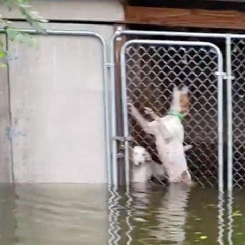 JWoww: Panik wegen Sandy