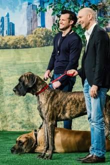 """Tim Ley (l.) und Jérome Glozbach de Cabarrus stellen den Löwen ihre Idee """"GOLEYGO"""" vor. Für 500.000 Euro und 25,01 Prozent wollen sie ihr Geschäft mit der speziellen Hundeleine ankurbeln."""