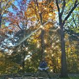 Auf der alten Steinmauer im Waldgarten sitzt Gisele gern und macht Yoga.