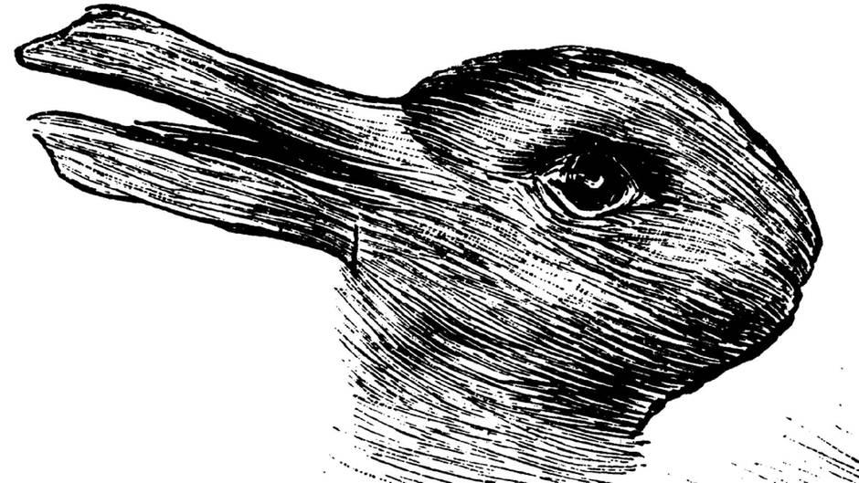 Ente oder Hase: Welches Tier sehen Sie?