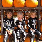 """""""Meine drei kleinen Kürbisse"""", postet Schauspielerin Molly Sims liebevoll zu dem Foto ihrer Kinder Brooks, Grey und Scarlett."""
