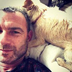 """4. Oktober 2018  """"Genau da, wo ich sein möchte. Danke euch allen"""", postet Hundefan und Geburtstagskind Liev Schreiber."""