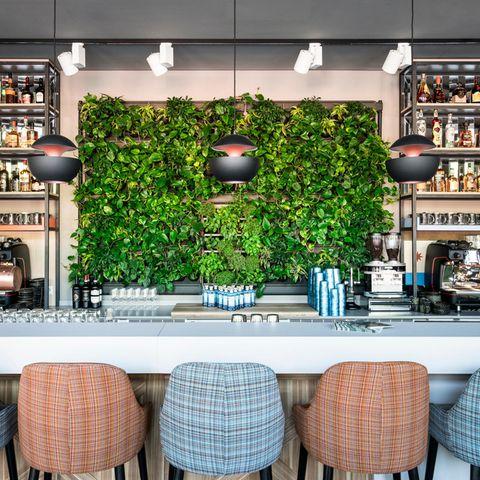 Zutaten und Inspirationen holt sich das Bar-Team von Spezialisten aus dem Botanischen Garten in Göttingen