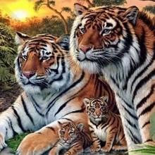 Suchbild: Auf diesem Bild sind mehr als vier Tiger versteckt