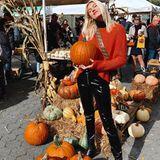 Model Devon Windsor liebt die herbstliche Jahreszeit. Fröhlich posiert die Blondine mit einem Kürbis für ihre Instagram-Fans.