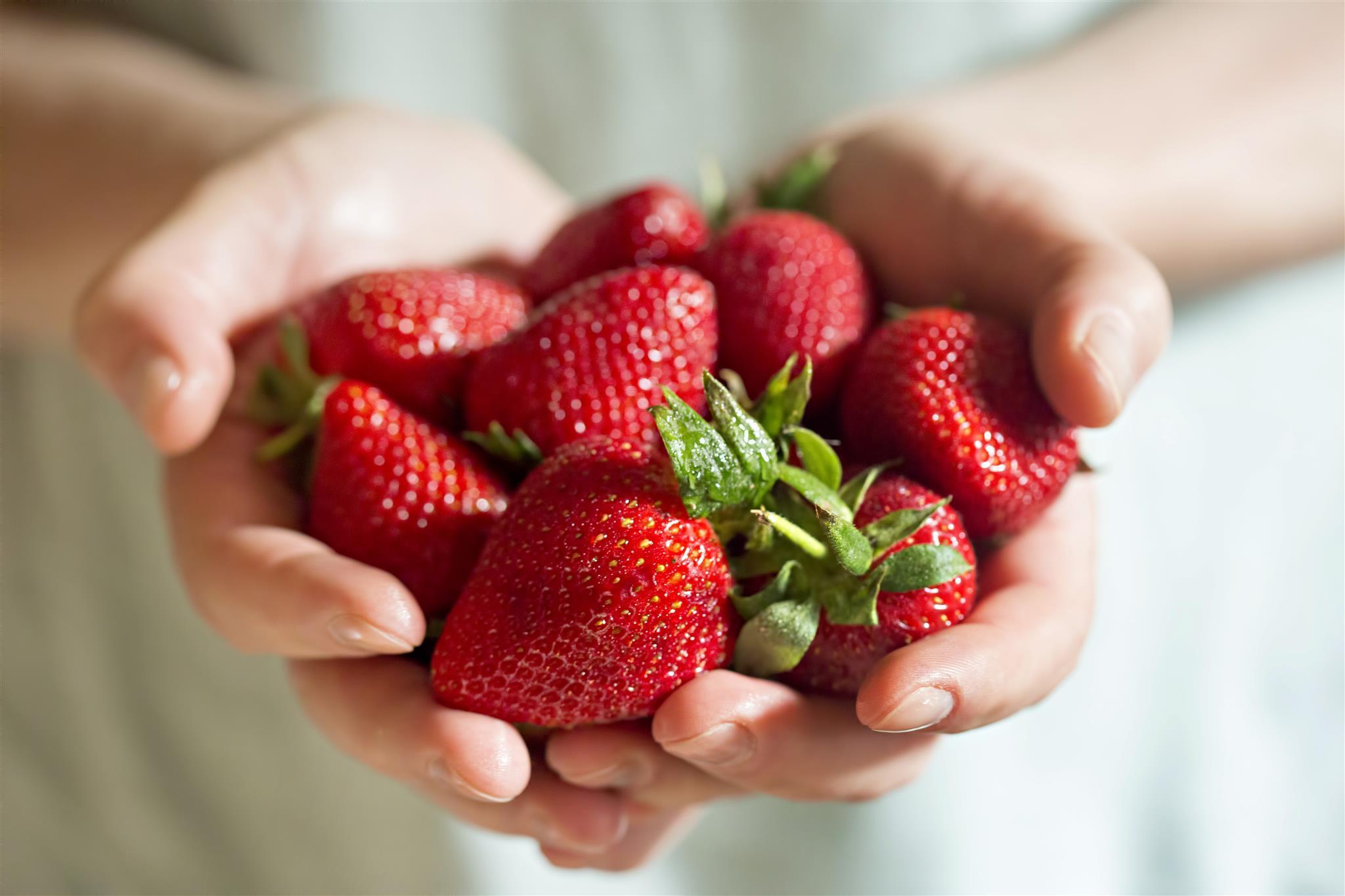 Lebensmittelwarnung: Erdbeeren mit Hepatitis A infiziert