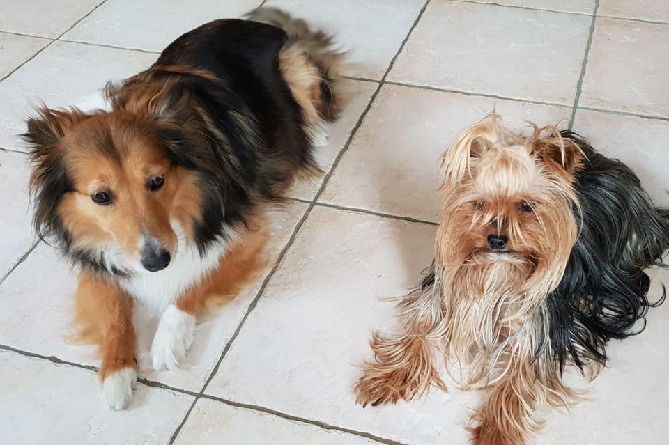 Vivi & Lucy