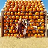 Fröhlich posiert Nicky Hilton mit Töchterchen Lily Grace auf einer Kürbisplantage.