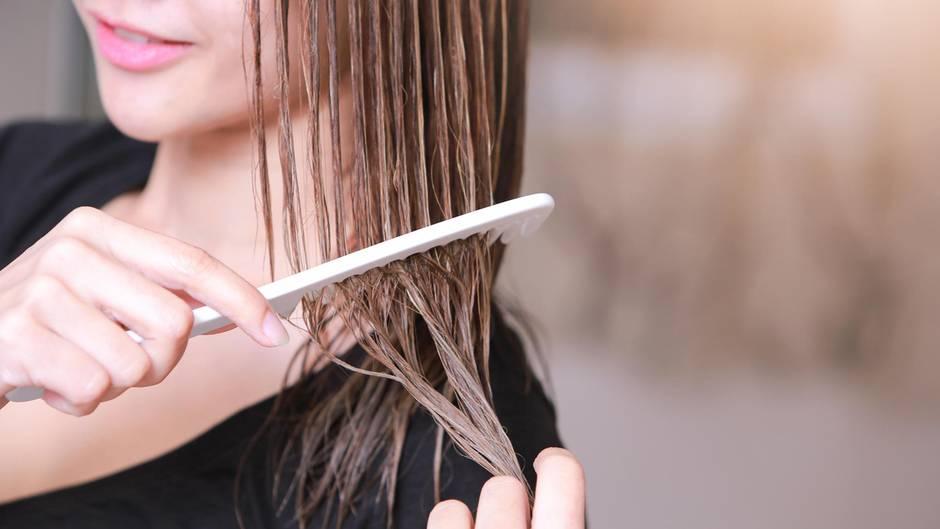 Vorsicht: Darum sollten Sie ihr Haar niemals nass bürsten