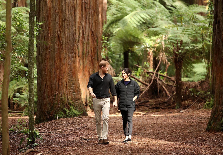 Tag 15  Hand in Hand, mit einem Lächeln im Gesicht spaziert das Traumpaar den Redwoods Treewalk in Rotorua entlang.