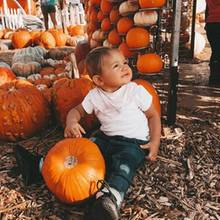 """""""Happy Halloween"""", postet Reality-TV-Sternchen Sarah Harrison. Ihre süße Tochter Mia Rose scheint Gefallen an großen Kürbissen gefunden zu haben."""