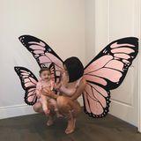 29. Oktober 2018  Auch Kylie Jenner hat sich mit Töchterchen Stormi zu Halloween in ein Schmetterlingskostüm geworfen.