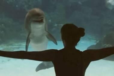 Tierliebe: Mit ihren Kunststücken verzaubert sie einen Delfin
