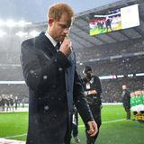 """10. November 2018  Momente der Stille und des Innehaltens vor dem Rugbyspiel England gegen Neuseeland: Prinz Harry zeigt sich am Samstag als Schirmherr von """"Rugby England""""tief berührt, als er im Regen stehend diegefallenen Soldaten des Ersten Weltkrieges geehrt hat."""
