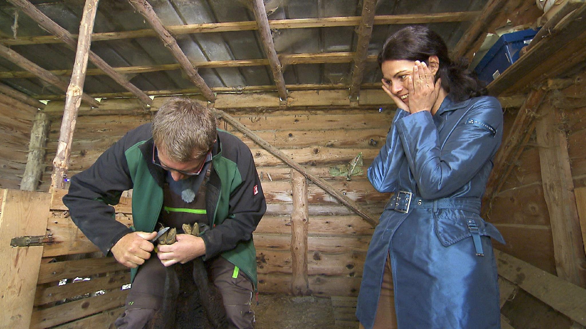 Dirk (40) aus Nordrhein-Westfalen zeigt Lena (40, Bürokauffrau), wie man die Klauen seiner Schafe stutzt. Lena ist sichtlich zurückhaltend und schafft es nicht mit anzupacken.