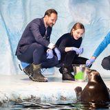 """17. November 2018  Beim Besuch des Robbenbeckens im Erlebniszentrum Polaria im Rahmen der Taufe des neuen Forschungsschiffs """"Kronprins Haakon"""" haben Prinzessin Ingrid Alexandra und Prinz Haakon viel Spaß mit den süßen Robben."""