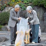 19. November 2018  Kaiserin Michiko und Kaiser Akihito lassen dieKoi-Karpfen in einen Teich im Ninomaru-Garten im Kaiserpalast von Tokio frei.