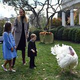 Aber eher unauffällig oder nicht, die Hauptrolle im Garten des Weißen Hauses spielt ja sowieso der Truthahn.