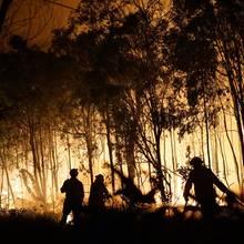 """Das Dschungelcamp von der RTL-Show """"Ich bin ein Star, holt mich hier raus"""" ist vom australischen Buschfeuer bedroht"""