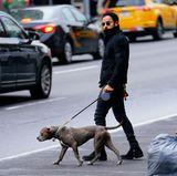 30. November 2018  Dick eingepackt spaziertJustin Therouxmit seinem Hund durch die Straßen von New York. Hätten Sie den Hollywood-Beau erkannt?