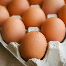 Rückruf Eier