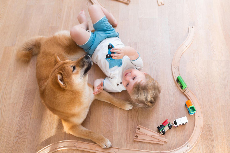 Hunde und Kinder sind eine Sache für sich